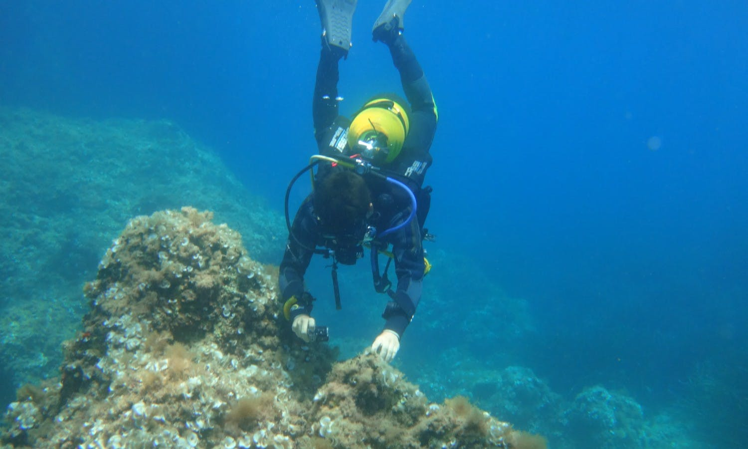 Diving experience for beginners in Santa Ponsa