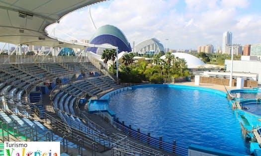 Biglietti per il parco oceanografico di valencia musement for Oceanografic valencia