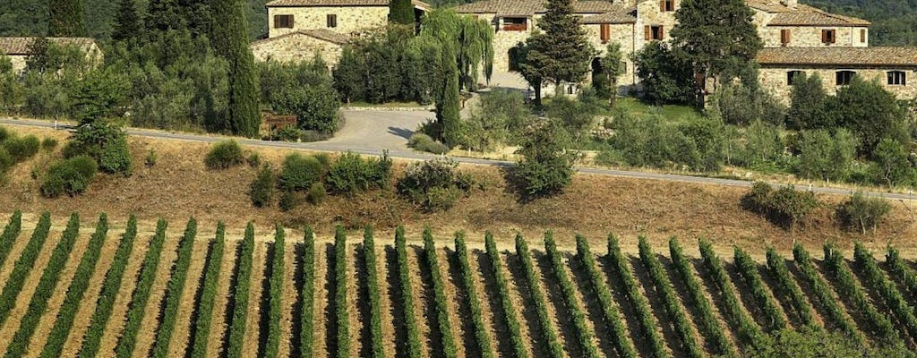 Chianti experience with wine tasting and two charming villages