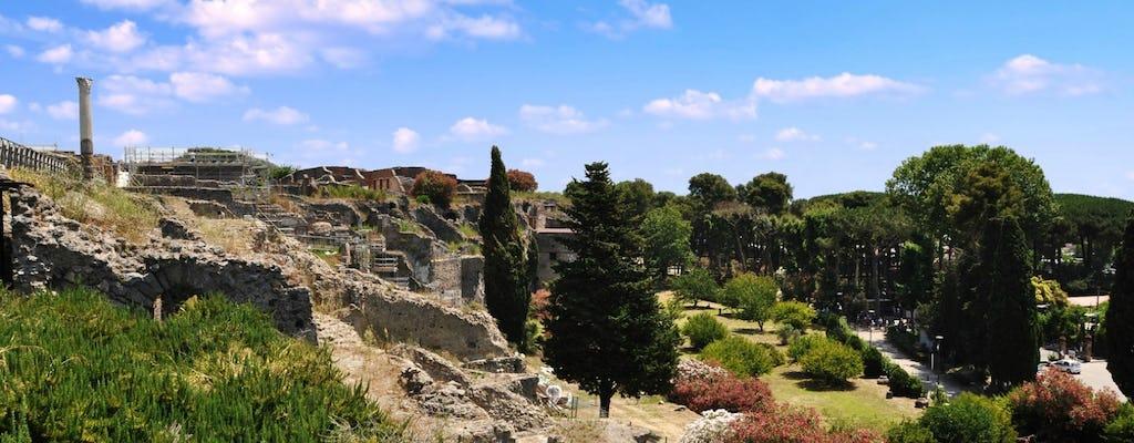 Escursione di un giorno a Pompei con degustazione di vini sul Vesuvio