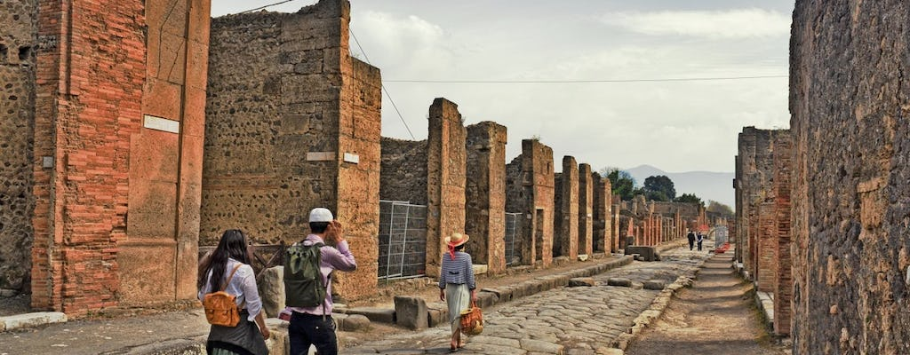 Pompeii and Herculaneum guided tour
