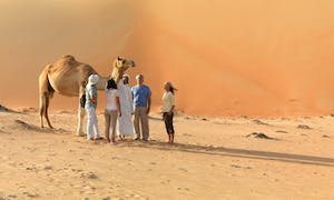 4x4 Desert Safari With Belly Dance Show And Camel Farm Visit