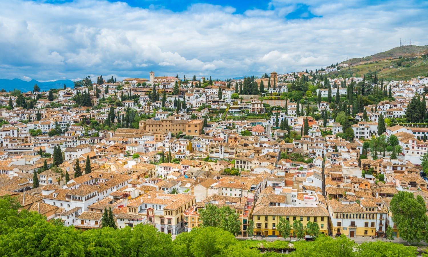 Guided historical tour of Granada: from the Muslims to the Christian era