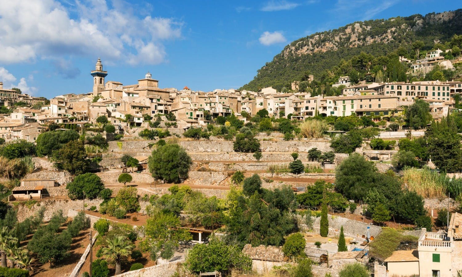 Mallorca guided tour with lunch and transport