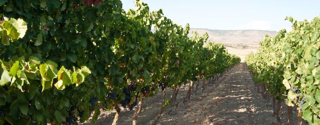 Tour por los viñedos de Cerdeña con cata de vinos