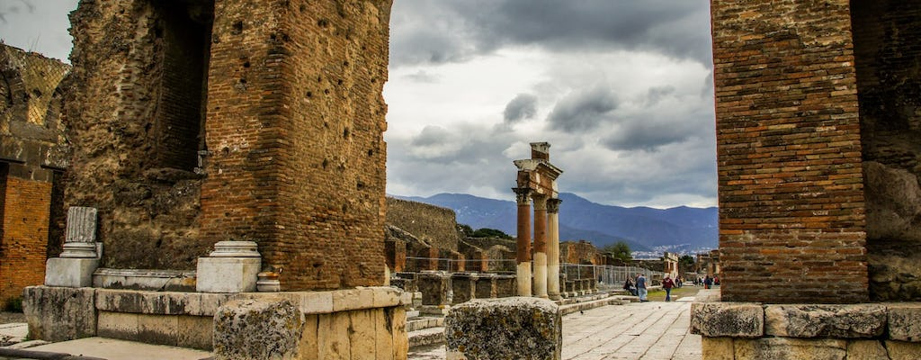 Pompeii and Naples 1-day tour from Rome