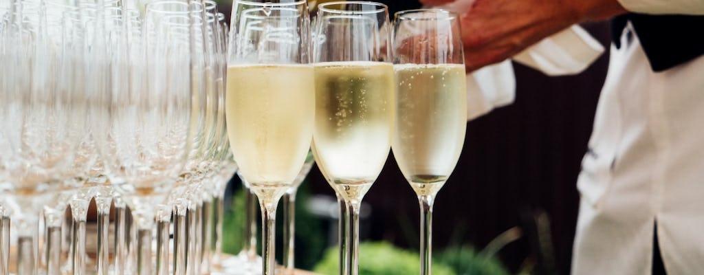 Tour enologico in Champagne da Parigi