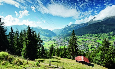 City tours,Excursions,Full-day excursions,Excursion to Kleine Scheidegg