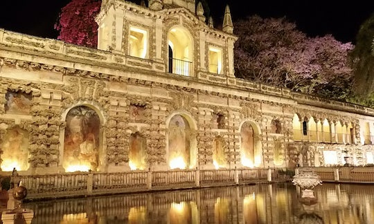 Seville guided tour at night with flamenco show