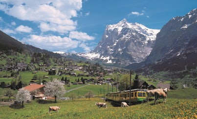 Excursions,Full-day excursions,Excursion to Interlaken,Excursion to Grindelwald