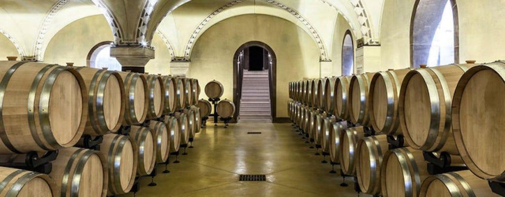 Dégustation de vin Prosecco et Amarone à Vérone