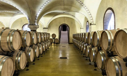 Degustacja wina Prosecco i Amarone w Weronie