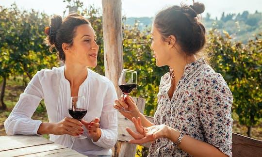 Degustazione di vini Amarone, Ripasso e Valpolicella a Verona