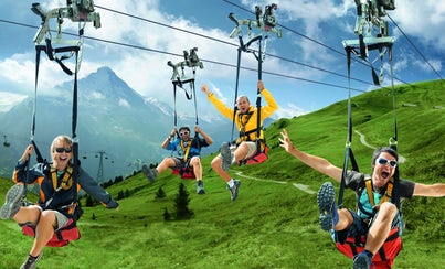 Excursions,Activities,Full-day excursions,Adrenalin rush,Excursion to Grindelwald