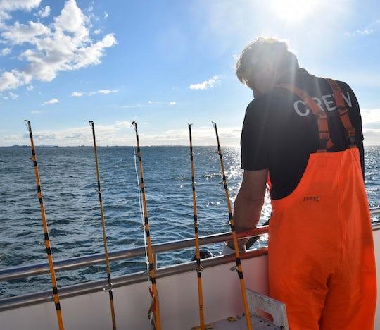 Sea fishing tour from Reykjavik