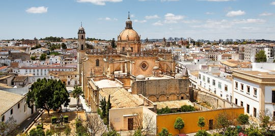 Jerez et Cadix visite guidée de Séville avec dégustation de vin
