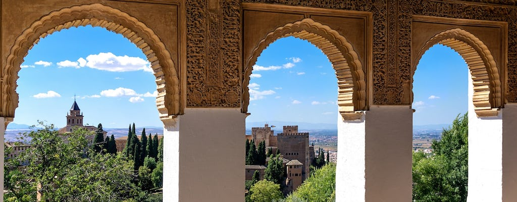 Skip-the-line tickets and guided tour of Alhambra, Albaicín and Palacios Nazaríes