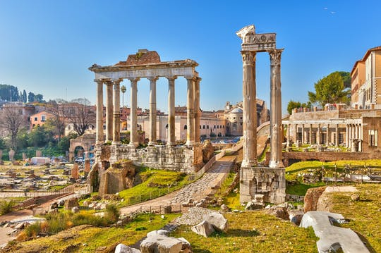Colosseum, Roman Forum and Palatine Hill private guided tour