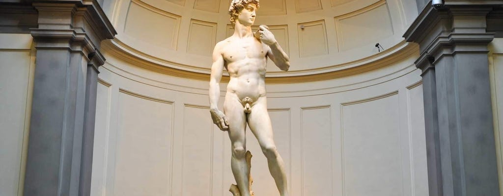 Tour della Galleria dell'Accademia e del David nei weekend