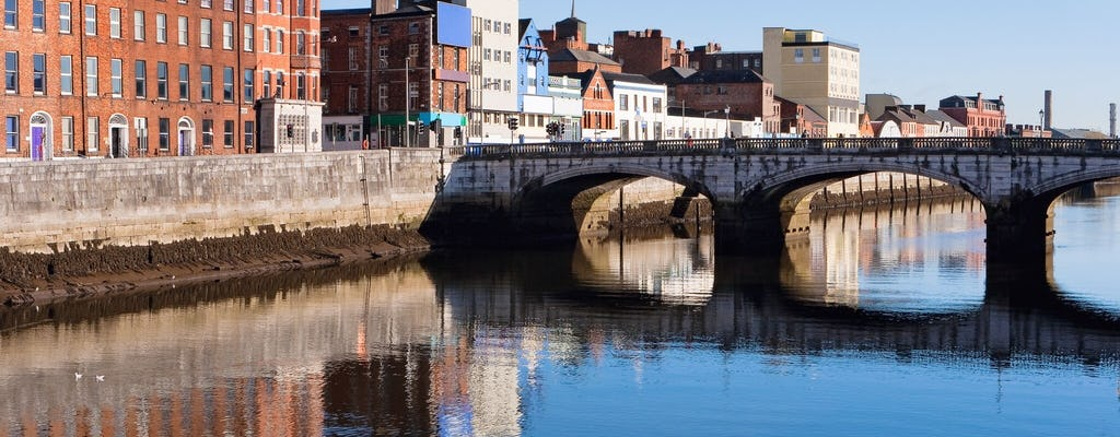Blarney Castle and Cork day tour