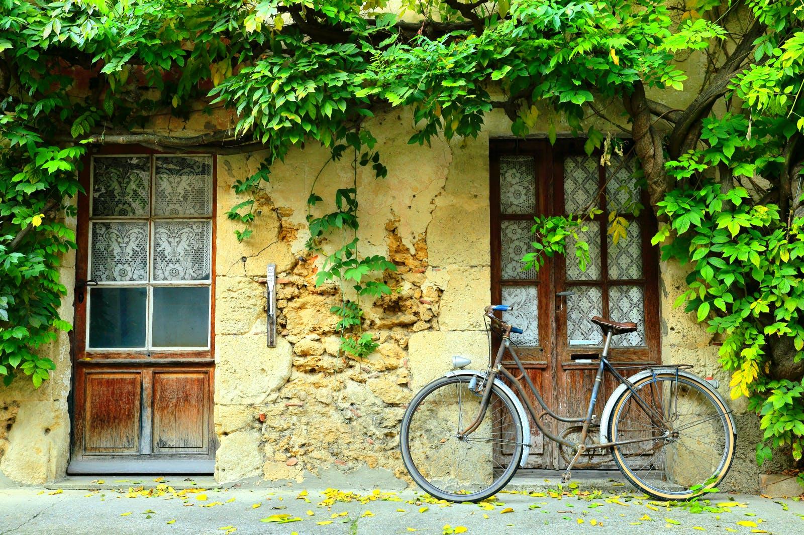 Vineyard half-day electric bike tour