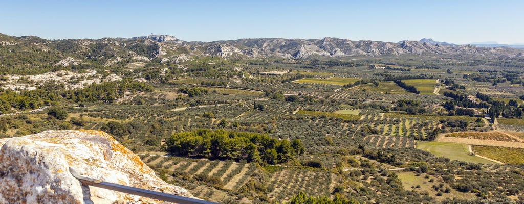 Olive and wine-tasting in Les Baux de Provence