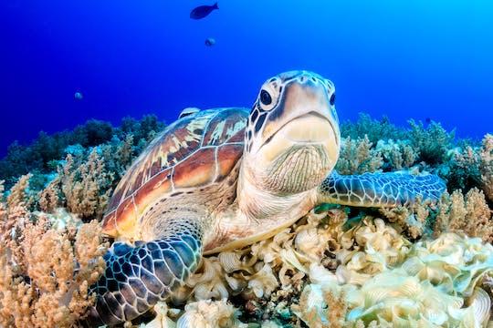 Key West Aquarium tickets