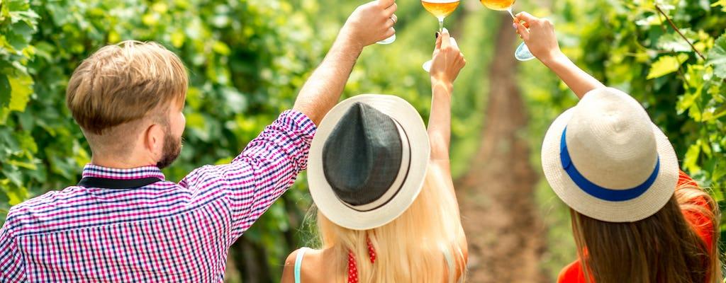 Tour di degustazione di vini e viticoltura presso la cantina Miquel Jane