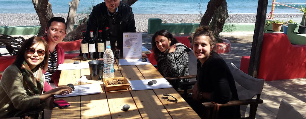 Ancient Akrotiri and Santorini wineries guided tour