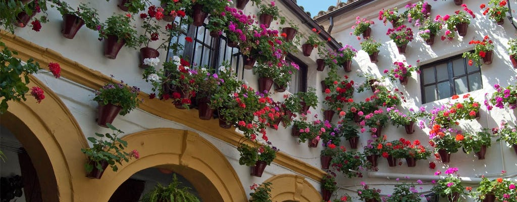Patios of Cordoba guided tour