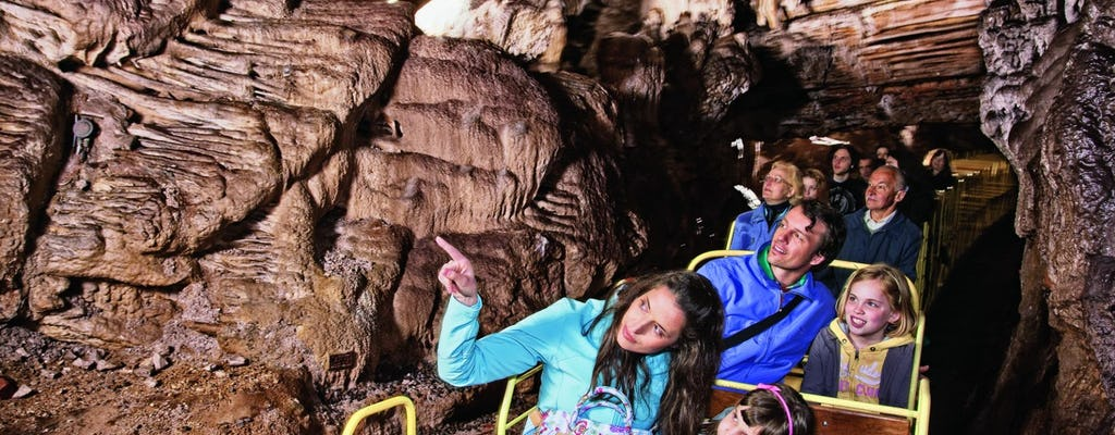 Lake Bled and Postojna Cave full-day tour from Ljubljana