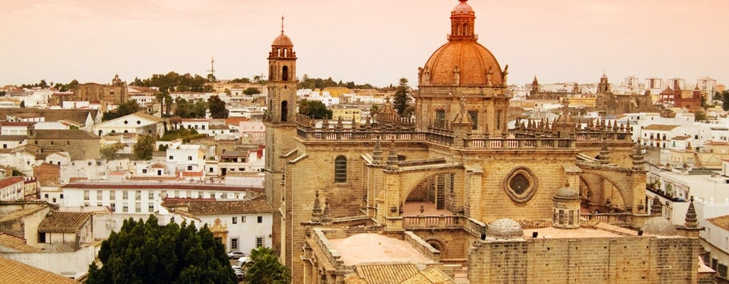Private day trip to Jerez from Cádiz with horse show and sherry winery