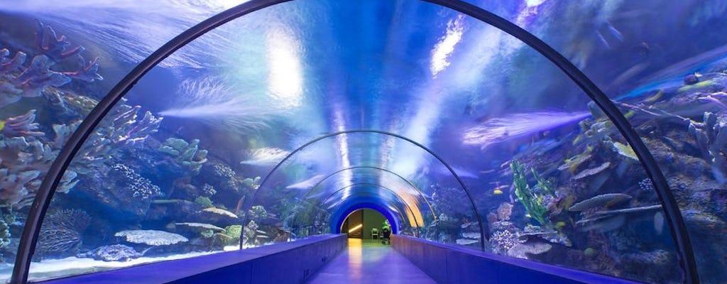 AquaRio - Rio de Janeiro Aquarium