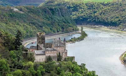 Excursions,Full-day excursions,Excursion to Rhine Valley