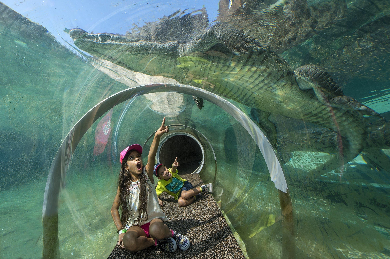 Actividades,Tickets, museos, atracciones,Otras actividades,Zoo de Miami