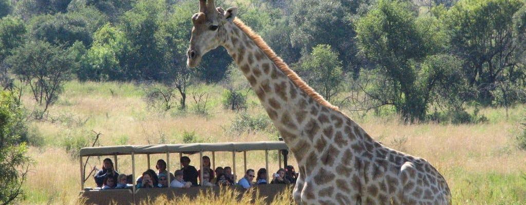 Unidade de jogo Sun City no Parque Nacional de Pilanesberg