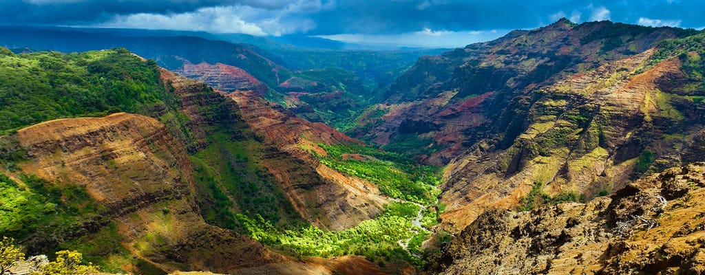 Kauai Waimea Canyon and Wailua River tour