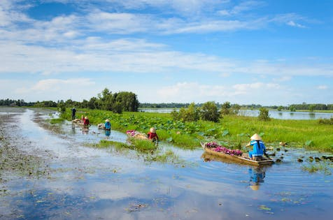 Private Mekong Delta full-day cruise