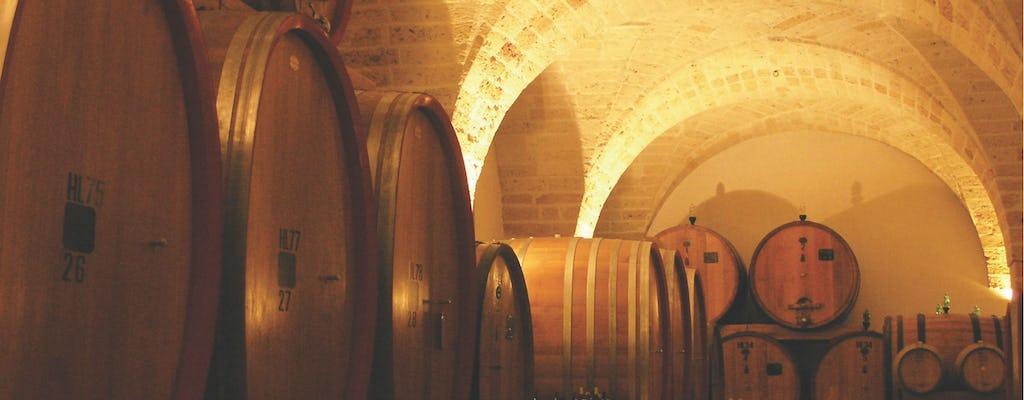Visita a la bodega y degustación en Salento en la bodega Leone de Castris.