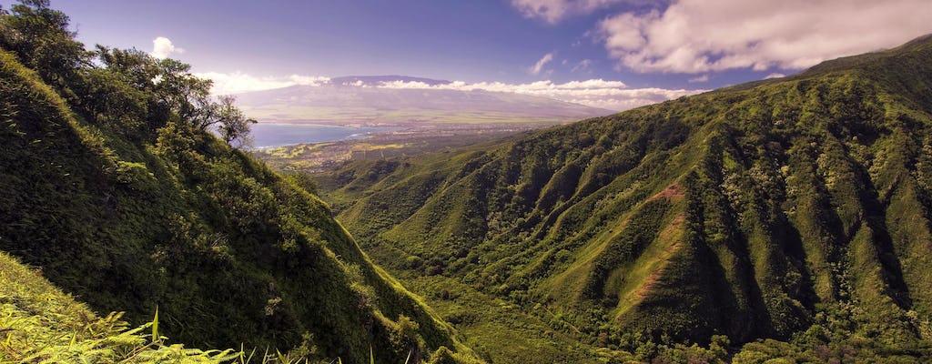 Wycieczka Central Maui i Iao Valley z Haleakalą