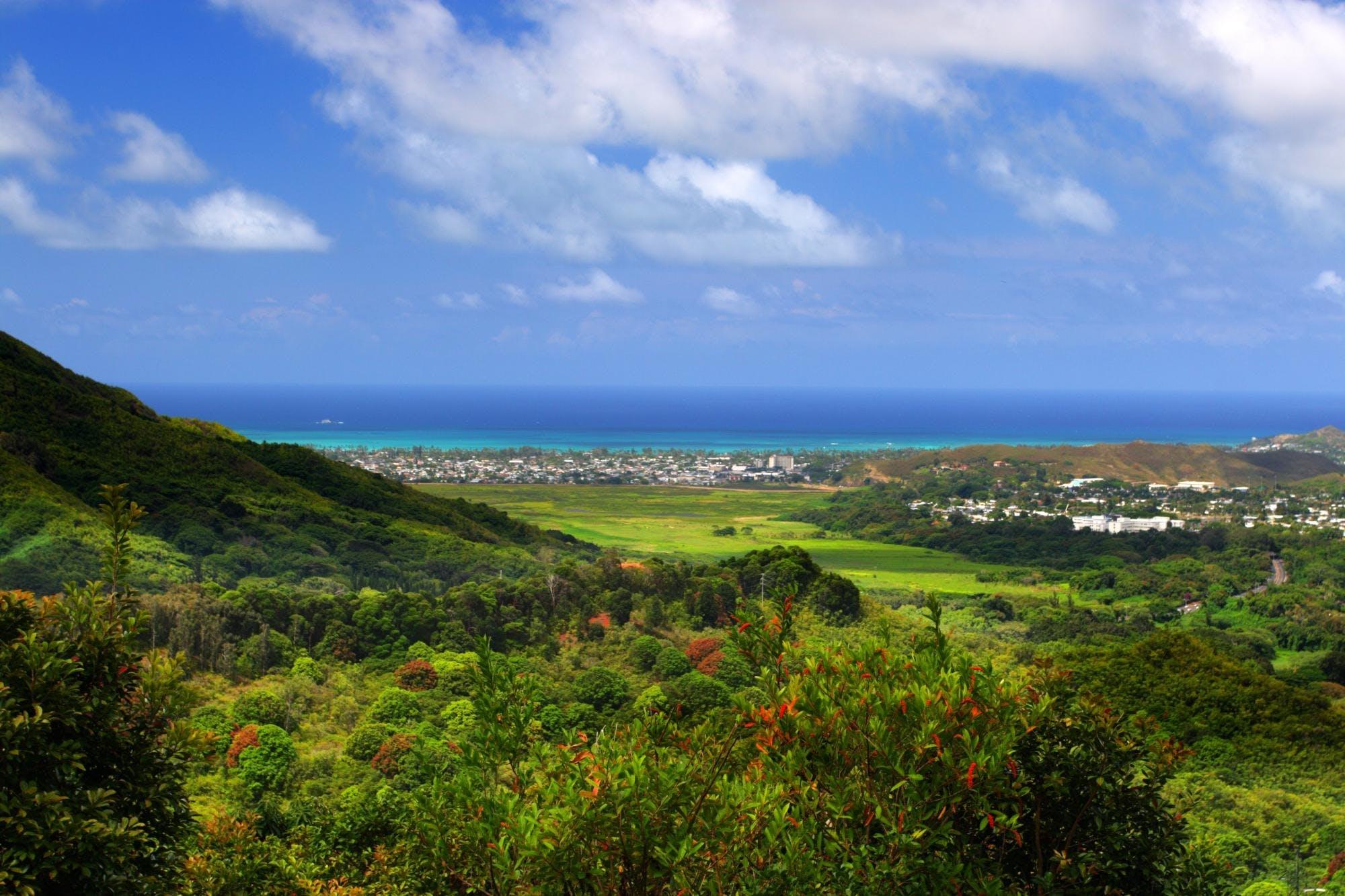 Ver la ciudad,Ver la ciudad,Tickets, museos, atracciones,Entradas a atracciones principales,Tour por Pearl Harbor,Excursión a Oahu