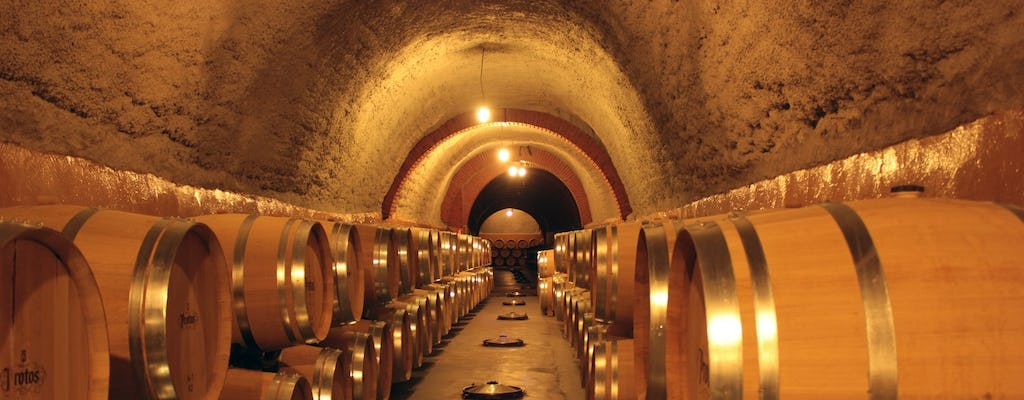 Wine experience with castles, medieval cities or cathedrals guided tour from Madrid