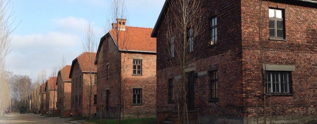 Tour del Museo e Memoriale di Auschwitz-Birkenau con partenza da Cracovia
