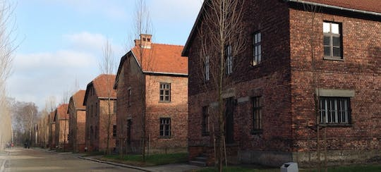 Auschwitz-Birkenau Museum and Memorial Tour from Krakow