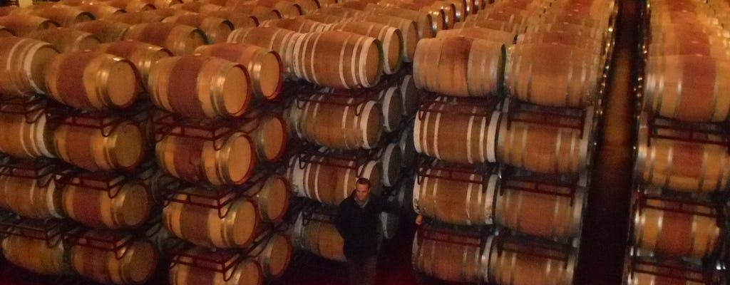 Tour del vino Ávila e Rueda da Madrid