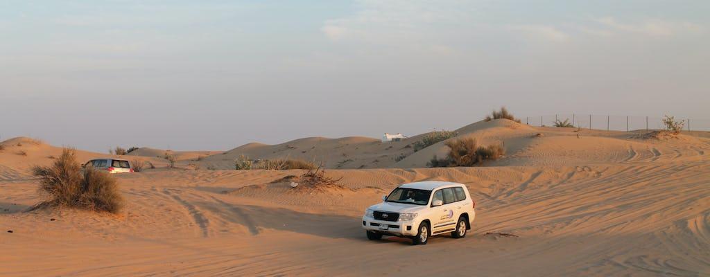 Dubai cityscape and desert safari tour