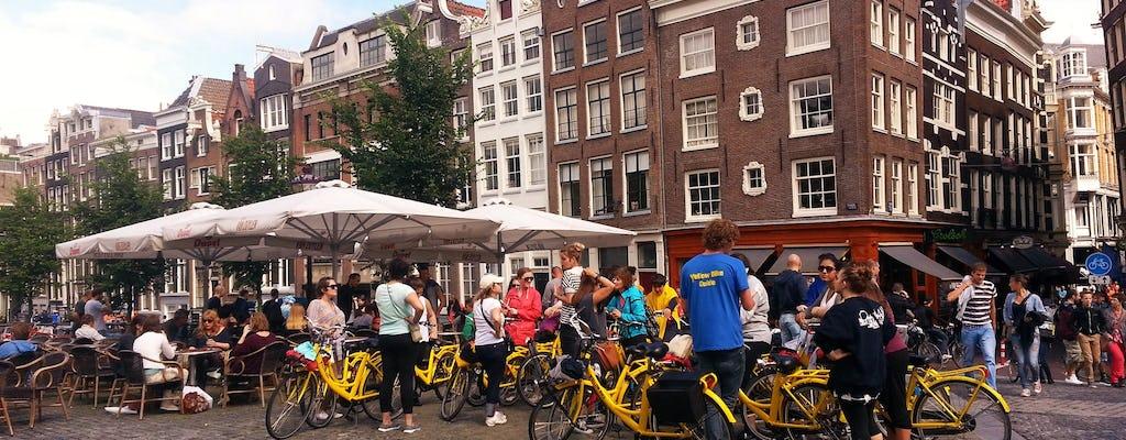 Amsterdam: two-hour bike tour