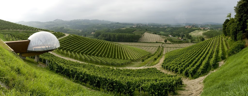 Visit to Ceretto Winery with Barolo tasting