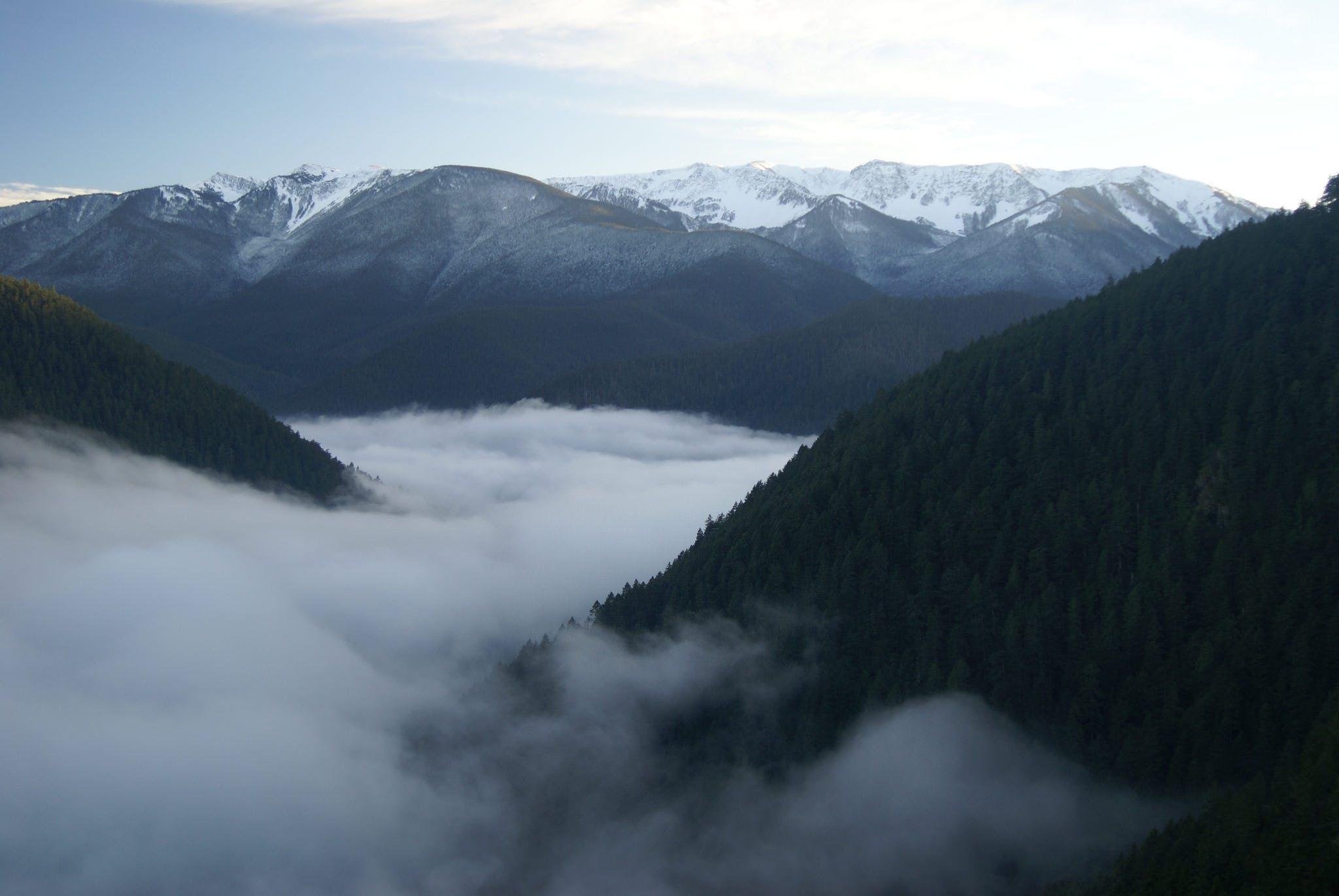 Salir de la ciudad,Actividades,Excursiones de un día,Salidas a la naturaleza,Excursión a Parque Nacional Olympic