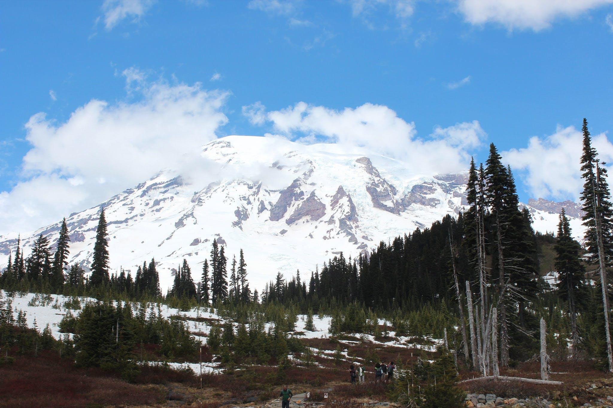 Ver la ciudad,Actividades,Visitas en autobús,Salidas a la naturaleza,Excursión a Monte Rainier